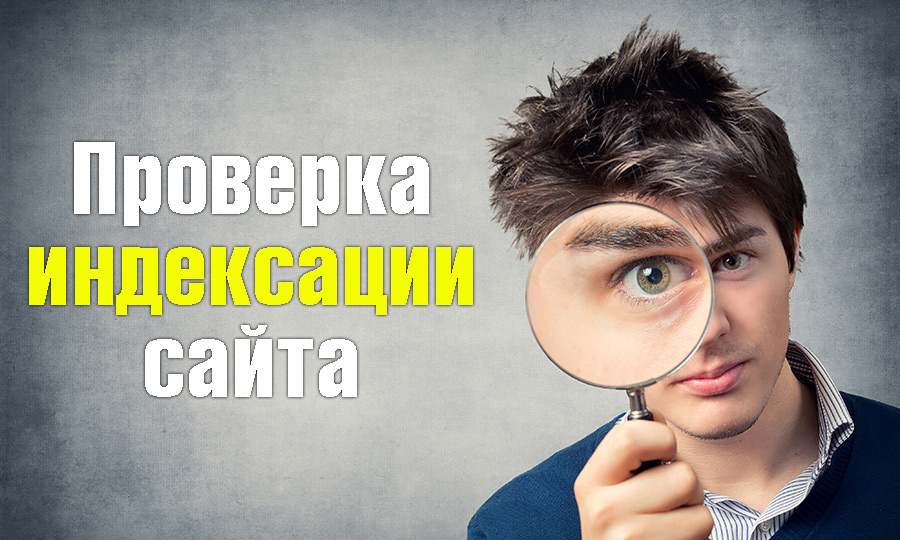 Проверить индексацию сайта в поисковых системах