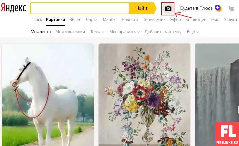 Поиск картинок в Яндексе